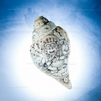 Hand Sculpted Conch Shell Shankha from Nepal
